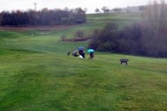024_OX-BoW-Archery-Golf-2017
