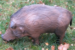 CSS-Wildschwein